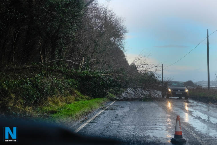 Storm Eleanor resulted in many power outages and trees blocked many roads. Photograph: Columba O'Hare/ www.newry.ie