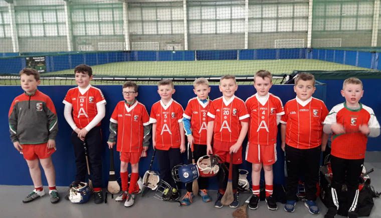 A group of young Craobh Rua hurlers who participated in the recent U9 Hurling Blitz