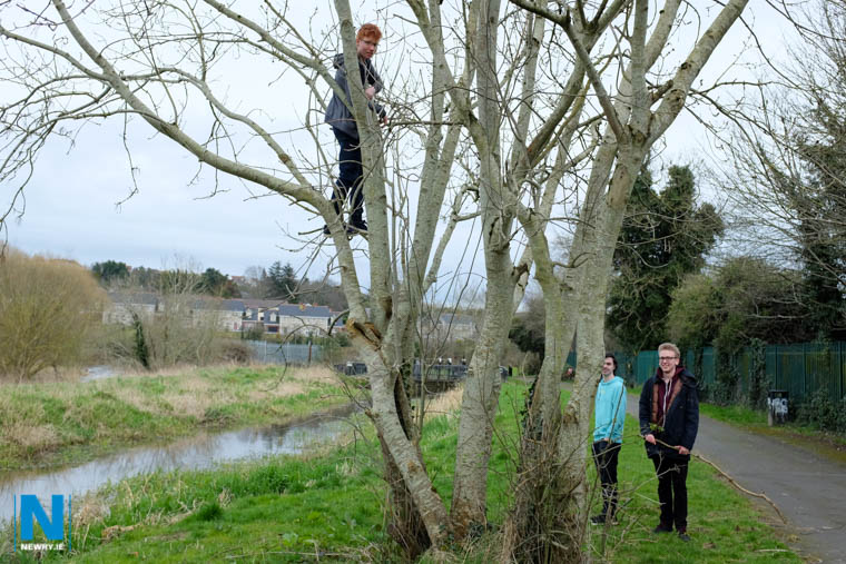 Climbing new heights on Newry Canal towpath. Photograph: Columba O'Hare/ Newry.ie