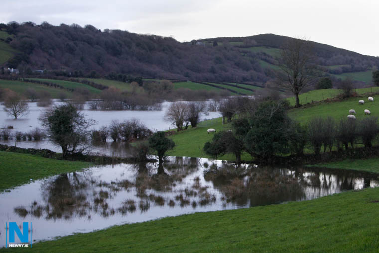 Flooding near Ballyholland in 2015. Photograph: Columba O'Hare/ Newry.ie