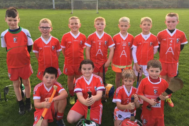 Members of Craobh Rua Under 8 panel after their game at Newry Shamrocks
