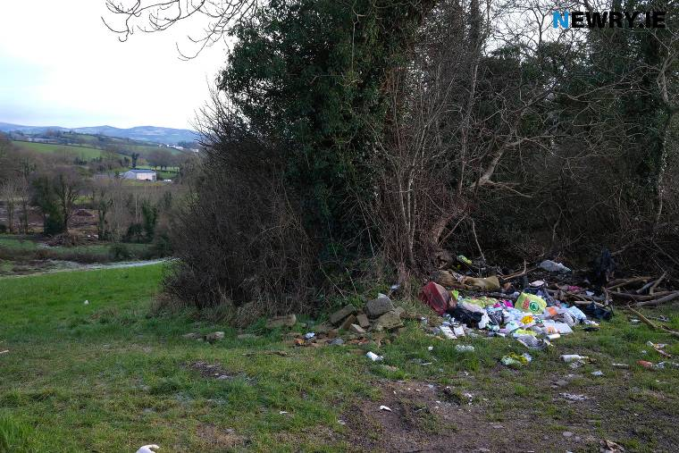 Litter on the Upper Damolly Road in Newry. Photograph: Columba O'Hare/ Newry.ie