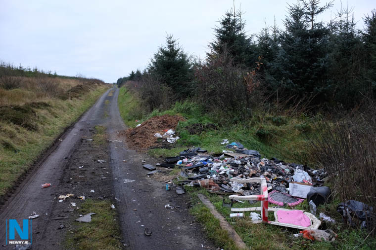Roadside dumping at Carrickatuke back in 2016. Photograph: Columba O'Hare/ Newry.ie