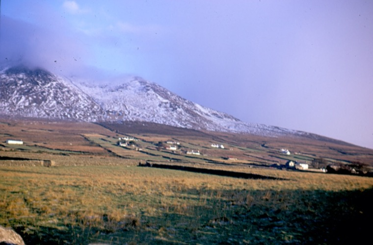 Hill farms on the Head Road, near Kilkeel, pictured in the 1970s. These farms, on which sheep are farmed and potatoes grown, are typical of the Mourne area.  Newry and Mourne Museum Collection